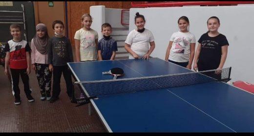 škola sporta
